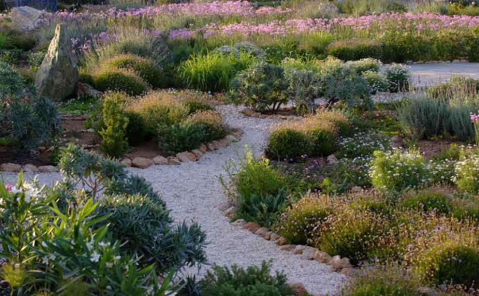 Quienes somos paisajismo vida verde for Paisajismo jardines